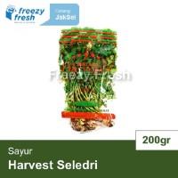 Daun Seledri (Per 1 Pack 200 gram)