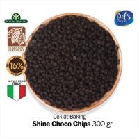 Shine Choco Chips - Premium Compound Coklat Chip 300gr