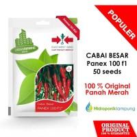 BENIH BIBIT CABE CABAI BESAR MERAH PANEX 100 F1 50 SEEDS PANAH MERAH