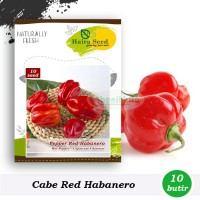 BENIH CABE CABAI SUPER PEDAS HOT RED HABANERO 10 SEEDS HAIRA SEEDS