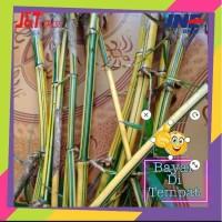 stek bambu kuning penangkal setan belek