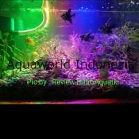 Lampu Aquarium 40cm 3 Warna RGB (red green blue) / Lampu akuarium