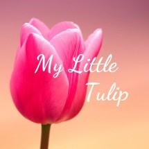 Logo My Little Tulip