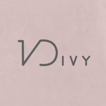 Logo VDIVY