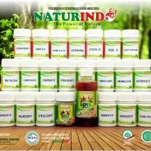 Logo Naturindo_Madiun
