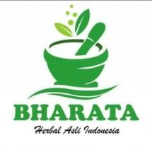 Logo WARUNG_ALAMI_BHARATA