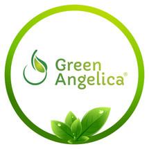 Logo Green Angelica Official Shop