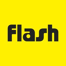 Logo Flash Tera