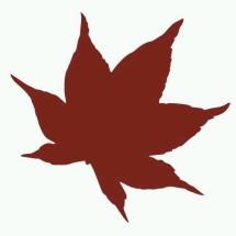 Logo PREFLEUR ONLINE