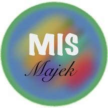 Logo Majek Ilak Tech Store