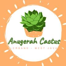 Logo Anugerah Berry Kaktus