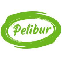Logo pelibur
