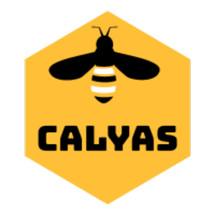 Logo Calyas