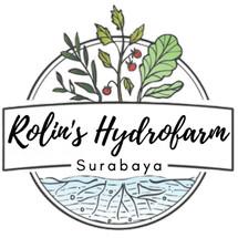 Logo Rolins Surabaya