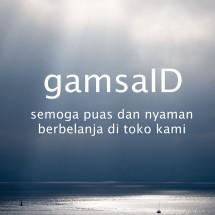 Logo gamsaID