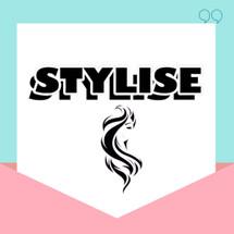 Logo Stylise