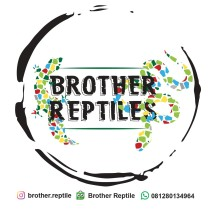 Logo Brother Reptile