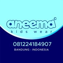 Logo aneema