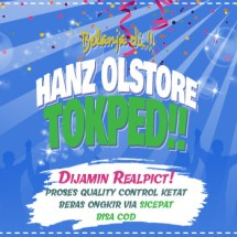 Logo Hanz Olstore