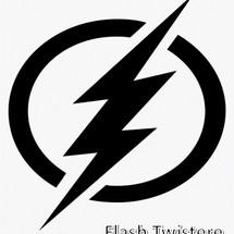 Logo Flash Twistere
