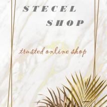 Logo Stecel_shop