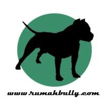 Logo RumahBully