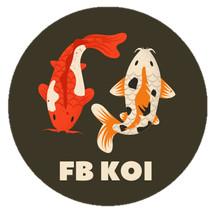 Logo Fbkoi