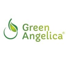 Logo GreenAngelica Official