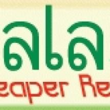 Logo Pacalaya Electronics