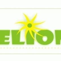 Logo Deliony