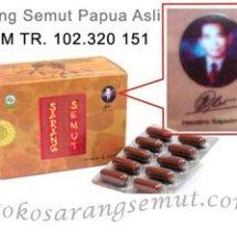 Logo Toko Sarang Semut