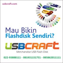 Logo USBCRAFT
