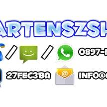 Logo Cartensz Shop