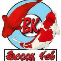 Logo benny koi cikarang