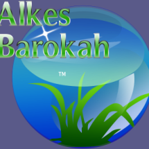 Logo Alkes Barokah Jepara