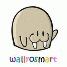 Logo Wallrosmart Cloth