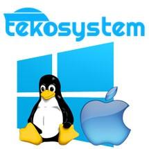 Logo tekosystem