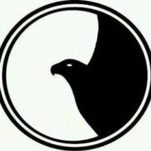 Logo AQUILA SHOP