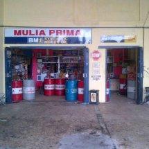 Logo MULIA PRIMA