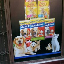 Logo Dog Pet Shop