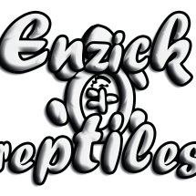 Logo enzick reptile