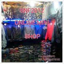 Logo snf2012