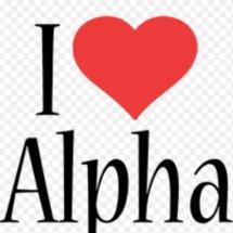 Logo alpha car accessories