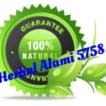 Logo Herbal alami 5758