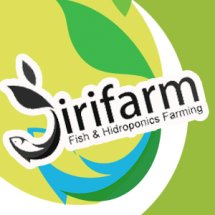 Logo JIRIFarm Hidroponik