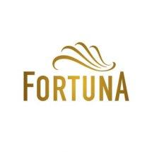 Logo Fortuna Mart