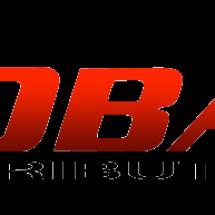 Logo Global link distribution