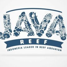 Logo Java Reef