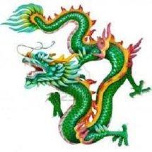 Logo Naga ijo