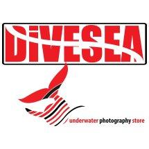 Logo Divesea Indonesia